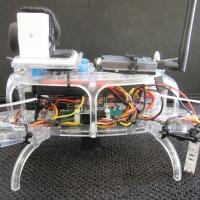 Quad Racer 250 Build 41